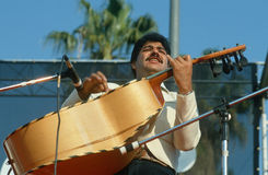 Musiciens de mariachi Images stock
