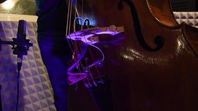 Musicista che gioca lo studio di musica dello strumento musicale del contrabbasso video d archivio