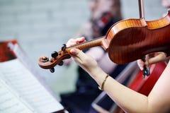 Musicista del giocatore del violino Immagine Stock