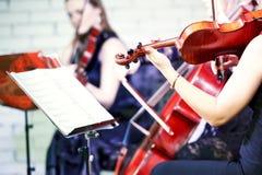 Musicista del giocatore del violino Immagini Stock Libere da Diritti