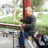 Musicista del parco Immagine Stock