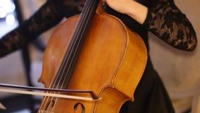 Musicista del violino della via stock footage
