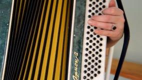 Musicista della ragazza che gioca la fisarmonica stock footage