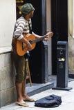 Musicista della via Immagini Stock