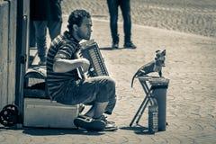 Musicista della via con canino Fotografie Stock