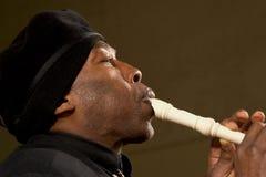Musicista della via di Minneapolis Fotografia Stock Libera da Diritti
