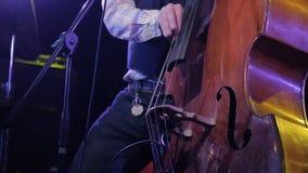 Musicista Playing Contrabass Close-Up Equipaggi il fondo scuro di legno del contrabbasso del gioco dell'artista in scena stock footage