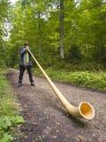 Musicista svizzero che gioca il suo Alphorn Immagini Stock