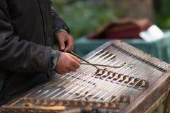 Musicus die gehamerd hakkebord met houten hamers spelen stock foto