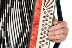 Musicushand het spelen harmonika'sclose-up Geïsoleerd op witte rug royalty-vrije stock fotografie