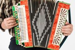 Musicushand het spelen harmonika'sclose-up Geïsoleerd op witte rug stock afbeelding