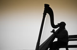Musicusharpist silhouet Stock Afbeeldingen