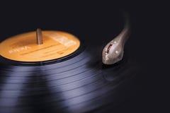 musik Arkivfoton