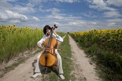 Musik av sommar Arkivbilder