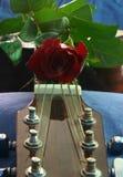 musik för 5 förälskelse Royaltyfria Foton