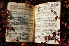 Musik i skogen Arkivbild
