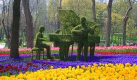 Musik på blommor Royaltyfri Fotografi