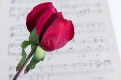 musik steg Royaltyfri Fotografi