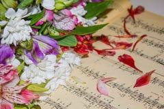 Musik und Blumen lizenzfreie stockfotos