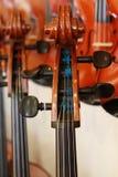 musikal för 14 instrument Fotografering för Bildbyråer