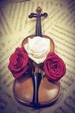 musikalen bemärker den gammala rofiolen Arkivbild