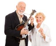 Musikalische ältere Paare lizenzfreies stockbild