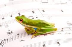 Musikalischer Frosch Lizenzfreies Stockbild