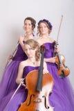 Musikalisk trio med instrument Royaltyfria Bilder