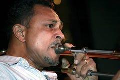 Musiker Stockbild