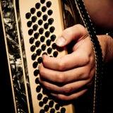 Musiker, der Akkordeon spielt Lizenzfreies Stockfoto