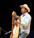 Musiker, der an einer Harfe durchführt Stockfoto