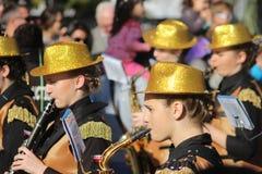 Musiker in der Karnevals-Parade Lizenzfreie Stockbilder