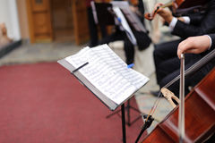 Musiker mit Viola Stockbild