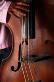 Musiker som leker en traditionell violoncell Royaltyfria Bilder