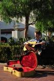 Musiker unter Baum Stockbild