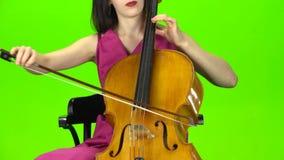 Musikern bugar raderna av fiolen grön skärm stock video