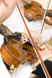 musikerprofessionell royaltyfri bild