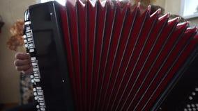 Musikinstrument Bayan stock video footage