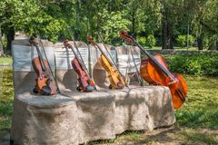 Musikinstrument i natur Arkivbilder