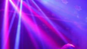 Musikljus på bröllopsdiskotan i restaurangen stock video