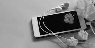 Musiksökande blomman för den vita hörluren för smartphonen ligger den rosa vita på den gråa bakgrunden för skärmen royaltyfria bilder