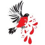 Musique blessée d'oiseau Image libre de droits