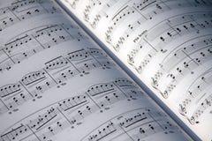 Musique de feuille Photos stock