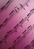 Musique de feuille Photographie stock libre de droits