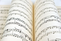 Musique de feuille Images stock
