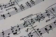Musique de feuille antique en gros plan Photos libres de droits