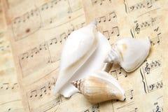 Musique de mer Images stock