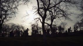 Musique de nuit Vieux cimetière avec les croix antiques au coucher du soleil clips vidéos