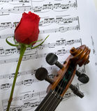 Musique de violon, de Rose et de feuille images libres de droits