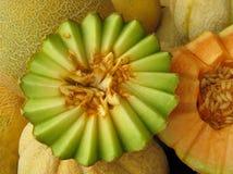 Musk Melon Royalty Free Stock Image